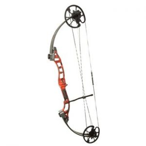 best bow fishing bow kit reviews