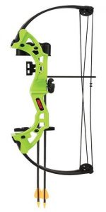hybrid compound bow