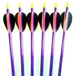 hunting arrows for sale