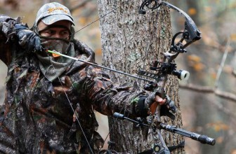 Best Compound Bow Reviews & Buyer's Guide