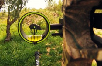 Best Single Pin Bow Sight Reviews